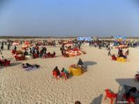Kite Festival - Visit Bihar